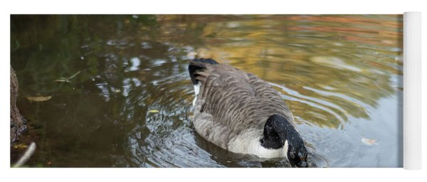 Yoga Mat featuring the photograph Goose Head In Water by Scott Lyons