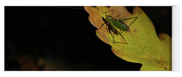 Grasshopper Yoga Mat