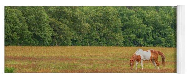 Grazing Paint Horse Yoga Mat