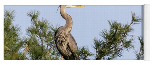 Great Blue Heron 2019-13 Yoga Mat