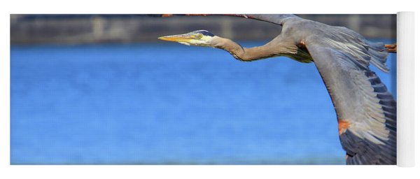 Great Blue Heron In Flight Yoga Mat