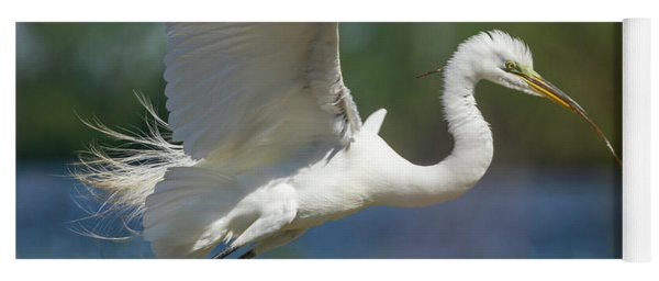 Great Egret 2014-1 Yoga Mat
