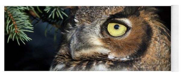 Great Horned Owl 10181801 Yoga Mat