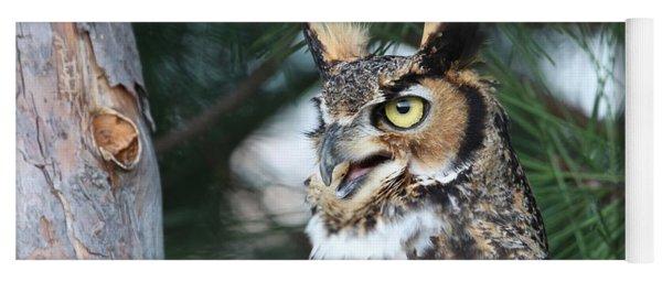 Great Horned Owl 5151801 Yoga Mat