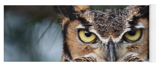 Great Horned Owl Eyes 51518 Yoga Mat