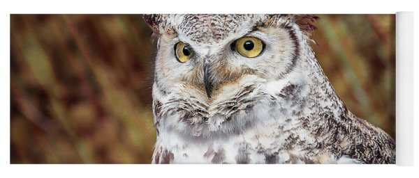 Great Horned Owl Portrait Yoga Mat