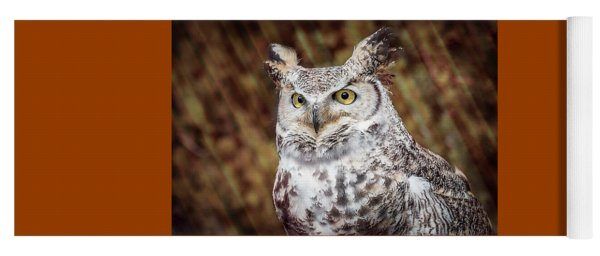 Yoga Mat featuring the photograph Great Horned Owl Portrait by Patti Deters
