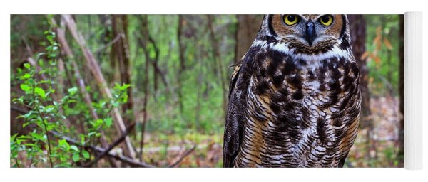 Great Horned Owl Standing On A Tree Log Yoga Mat