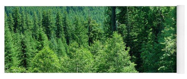 Green Conifer Forest On Steep Hillside  Yoga Mat