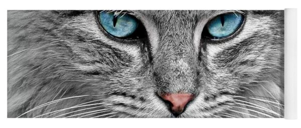 Grey Cat With Blue Eyes Yoga Mat