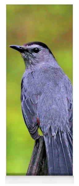 Grey Catbird Yoga Mat