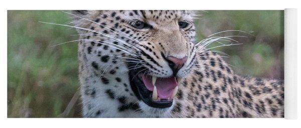 Grimacing Leopard Yoga Mat