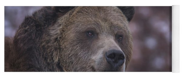 Grizzly  Yoga Mat