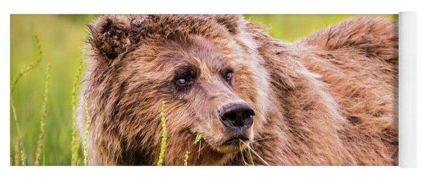 Grizzly In Lake Clark National Park, Alaska Yoga Mat