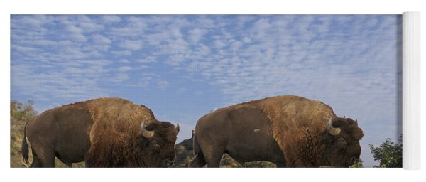Group Of Bison Walking Against Rocky Mountains  Yoga Mat
