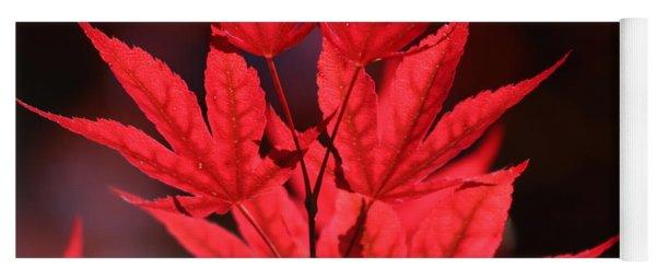 Guardsman Red Japanese Maple Leaves Yoga Mat