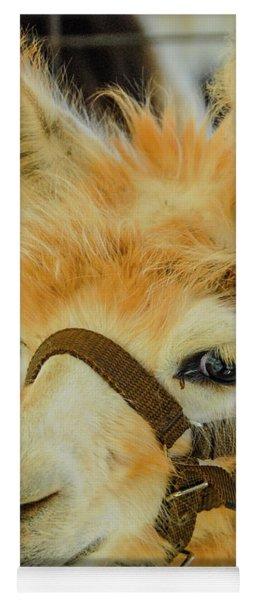 Happy Alpaca Yoga Mat