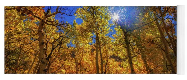 Yoga Mat featuring the photograph Happy Fall by Tassanee Angiolillo
