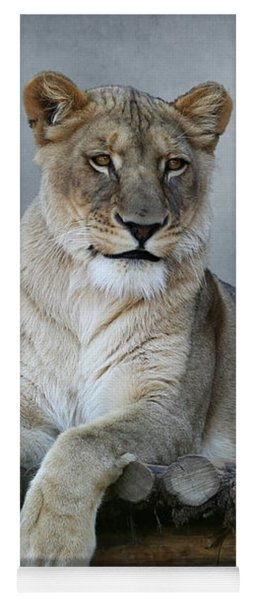 Yoga Mat featuring the photograph Happy Lioness by Debi Dalio