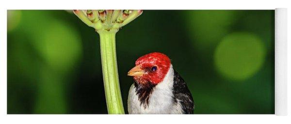 Happy Valentine's Day Bird Yoga Mat