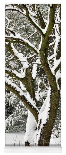Hawk's Tree In The Snow Yoga Mat