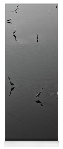 Herons On Lake 367 In Black And White Yoga Mat
