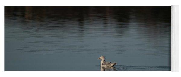 Herring Gull Yoga Mat