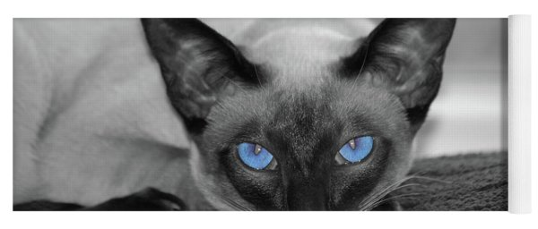 Hey There Blue Eyes - Siamese Cat Yoga Mat