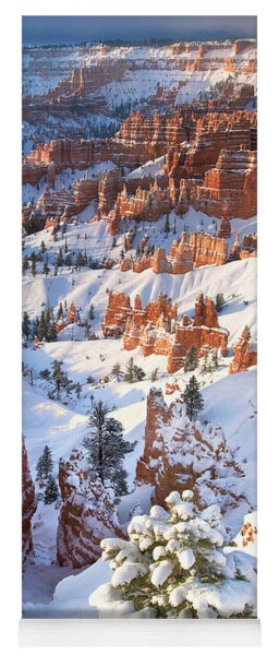 Hoodoos And Fir Tree In Winter Bryce Canyon Np Utah Yoga Mat