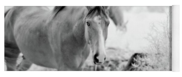 Horse In Infrared Yoga Mat