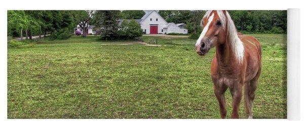 Horse In Pasture Yoga Mat