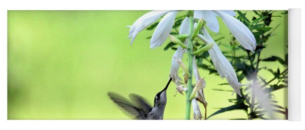 Yoga Mat featuring the photograph Hummingbird And Hosta Flowers by Trina Ansel