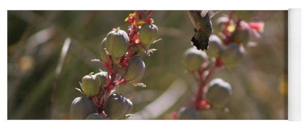 Hummingbird Flying To Red Yucca 3 In 3 Yoga Mat