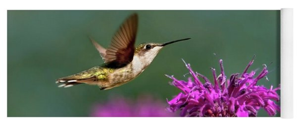Yoga Mat featuring the photograph Hummingbird Moving Along by Christina Rollo