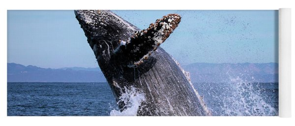Humpback Breaching - 01 Yoga Mat