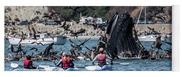 Humpbacks In Avila Harbor Yoga Mat