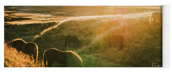 Icelandic Landscapes, Sunset In A Meadow With Horses Grazing  Ba Yoga Mat