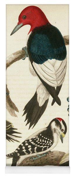 1. Red-headed Woodpecker. 2. Yellow-bellied Woodpecker. 3. Hairy Woodpecker. 4. Downy Woodpecker. Yoga Mat