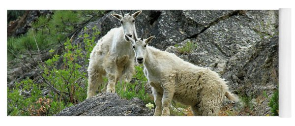 Idaho Mountain Goats Yoga Mat