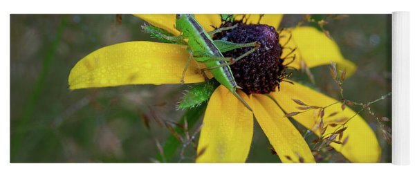 Yoga Mat featuring the photograph In The Meadow by Dale Kincaid