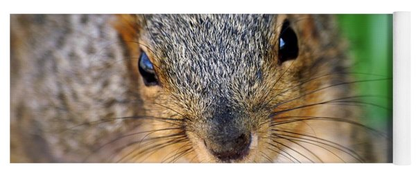 In Your Face Fox Squirrel Yoga Mat