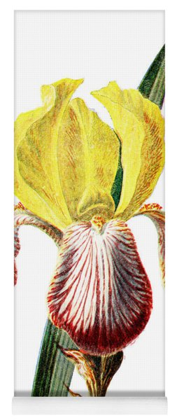 Iris Flower Yoga Mat