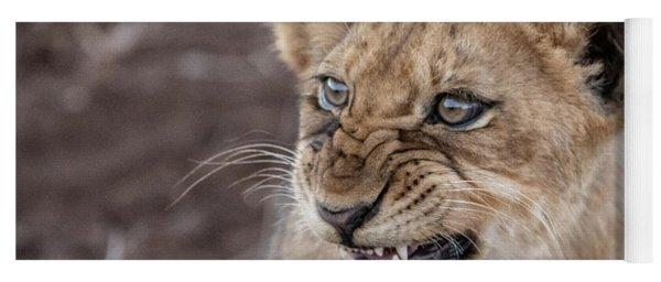 Irritated Lion Cub Yoga Mat