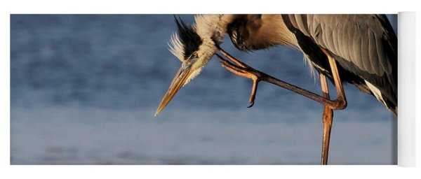 Itchy - Great Blue Heron Yoga Mat