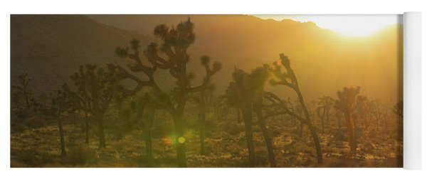 Joshua Tree At Sunset Yoga Mat