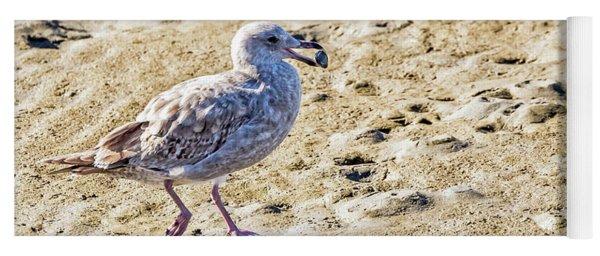 Juvenile Herring Gull Yoga Mat