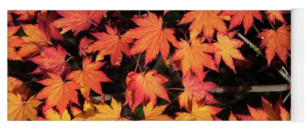 Korean Maple Autumn Leaves Yoga Mat