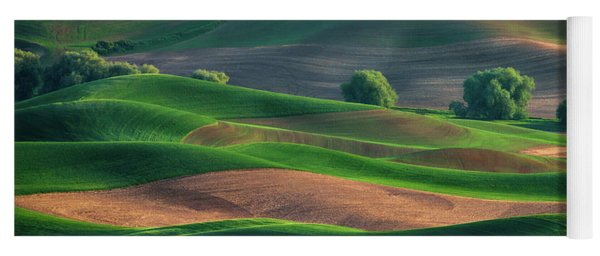 Late Afternoon In The Palouse Yoga Mat