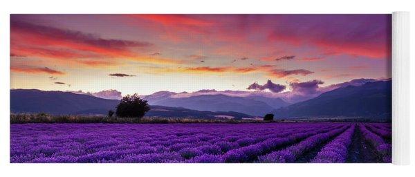 Lavender Season Yoga Mat