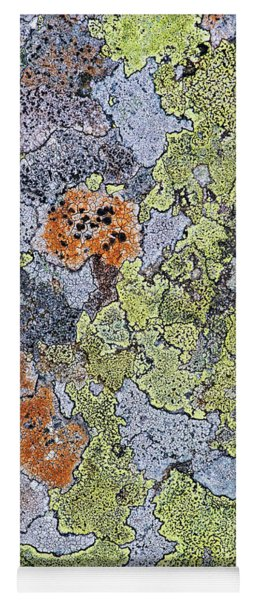 Lichen On Stone Yoga Mat